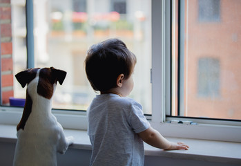 little boy and dog look out the window Wall mural