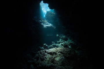 Wall Mural - Light descends into the darkness of a submerged cavern in the Solomon Islands. Caves and caverns riddle coral reefs since limestone can be easily eroded.