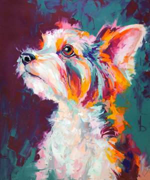 Oil dog portrait painting in multicolored tones. Conceptual abstract painting of a biewer terrier muzzle. Closeup of a painting by oil and palette knife on canvas.