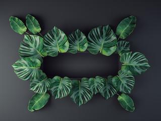 Wall Mural - tropical leaves