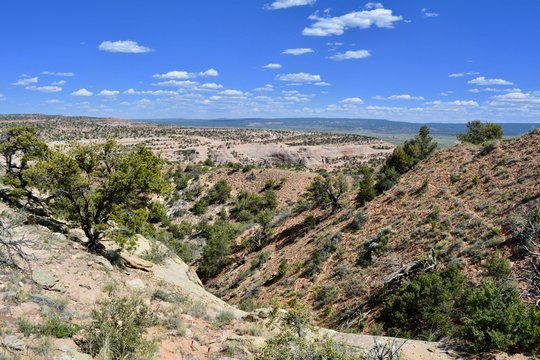 Red Rock Park Gallup New Mexico Desert Hiking Sandstone View
