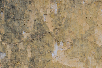 Canvas Prints Old dirty textured wall Cracked old plasterwall, paint chips, textured background