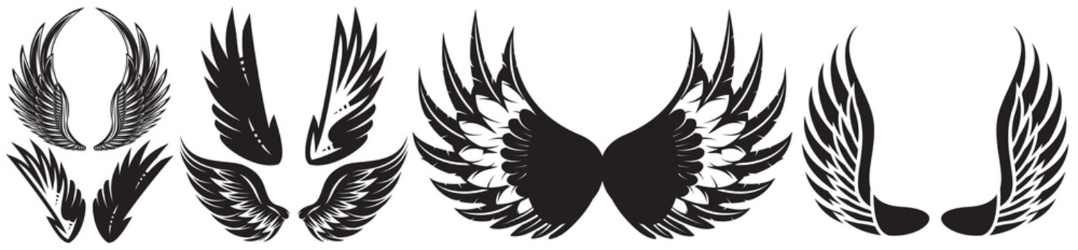 Vector monochrome set of different wings for design