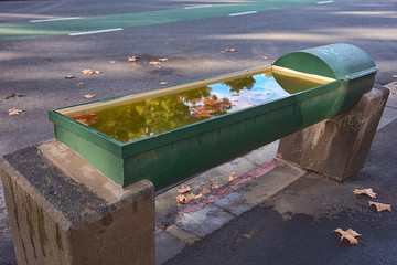A green horse water trough filled with water on the street of Melbourne Australia