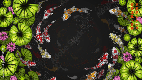 cee1f8d4c5beb Koi fish with lotus vector by hand drawing.Beautiful fish in water.Carp fish