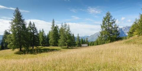 Fototapete - Panorama einer Bergwiese mit Almhütte im Hintergrund