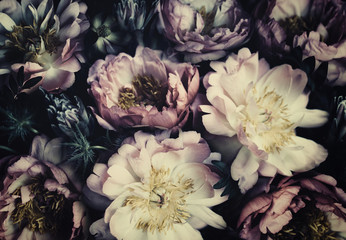 Acrylic Prints Floral Vintage bouquet of beautiful peonies on black. Floristic decoration. Floral background. Baroque old fashiones style. Natural flowers pattern wallpaper or greeting card