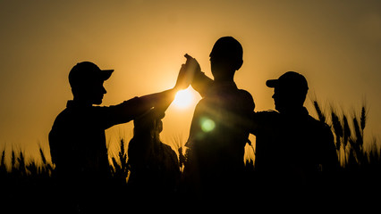 A team of energetic young people makes the high five mark in a picturesque wheat field at sunset.