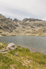 Details of the Regional Park of Gredos
