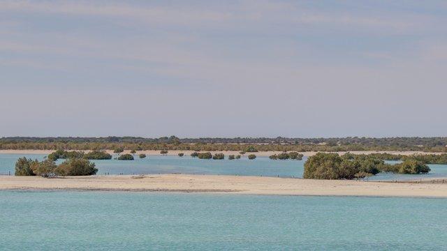 île de Sir Bani Yas aux émirats arabes unis