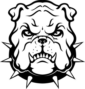 Bulldog Head, Displeased Mascot Animal