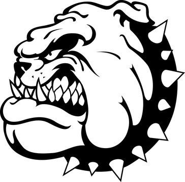 Bulldog Head, Side View