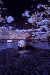 A fresh water lake in Montana, USA taken in Infra Red.
