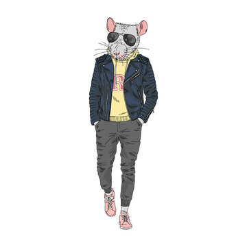 Humanized rat man hipster dressed up in modern urban style. Hand drawn vector illustration. Furry art image. Anthropomorphic animal.
