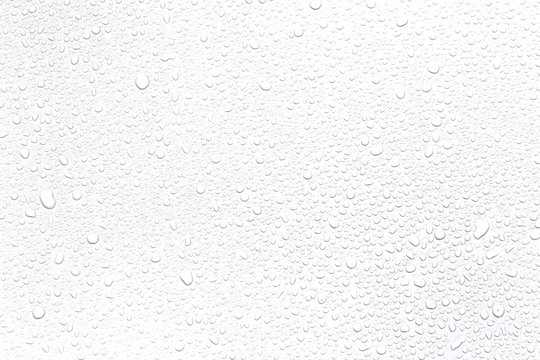 Water rain drops isolated on white background.