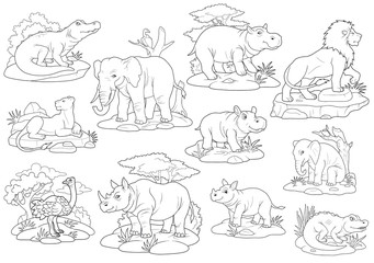 africa wild animals, coloring book, set of images