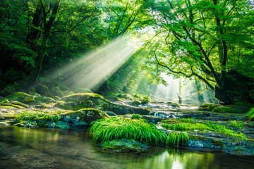 In de dag Groene Kikuchi valley, waterfall and ray in forest, Japan