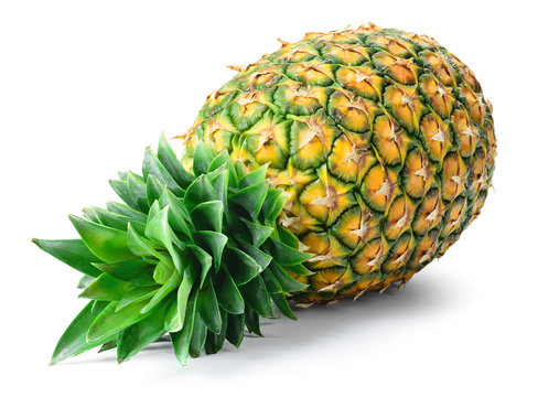 Pineapple isolated. Pineapple on white background. Whole pineapple with leaves.