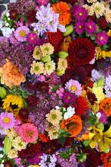 Herbstblumen, Hintergrund