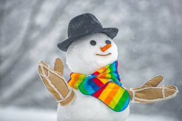 Snowman isolated on snow background. Winter background with snowflakes and snowman. Merry Christmas and Happy Holidays