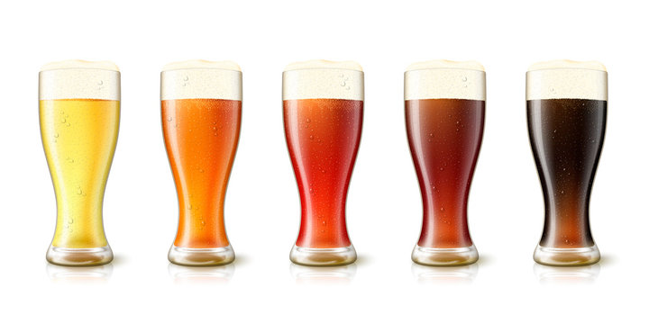 Vector 3d realistic various beers in tall glasses, yellow, amber, red, dark and black. Mockup template for beer advertising