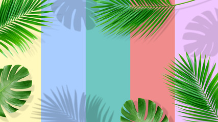 Summer composition. Tropical palm leaves on yellow background. Summer concept.