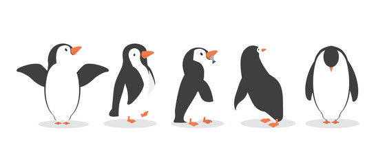 penguin characters in different poses set