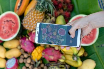 Woman hand take phone photography of tropical fruits. Sweet mango, papaya, pitahaya, banana, watermelon, pineapple. Raw vegan vegetarian healthy food