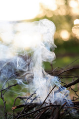 Campfire With Smoke