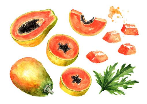 Sweet ripe papaya fruit set. Graphic design elements. Watercolor hand drawn illustration, isolated on white background