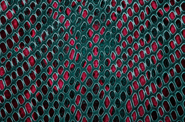 Wall Mural - Colorful snake skin texture. Seamless pattern. Abstract background.