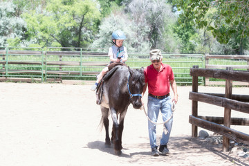 Toddler with a Safety Helmet on Goes on a Pony Ride at a Local Farm with his Horse Being Led by His...