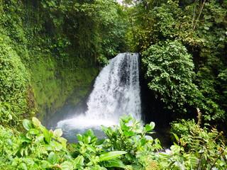 Nature du Costa Rica