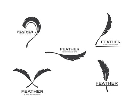 feather icon illustration vector template