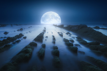 seascape at night with full moon over the sea