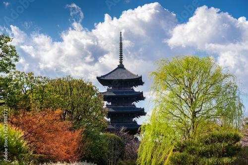 Wall mural Pagoda of Toji temple, Kyoto in Japan.