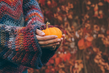 Woman wearing warm woolen sweater in bohemian style holding in hands a small orange pumpkin. In the background blurred autumn leaves. Colorful vibrant photography about handmade, knitting and harvest.