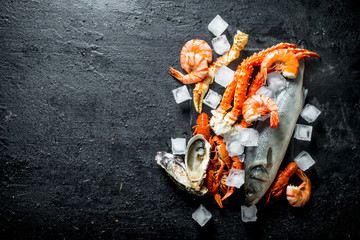 Fresh fish with seafood and ice cubes. Wall mural