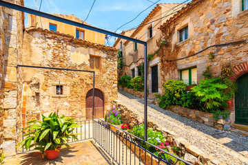 Wall Mural - Flowerpots in narrow street with stone houses in old town in Tossa de Mar, Costa Brava, Spain