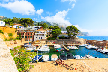 Fototapete - Fishing and sailing boats in picturesque port of Fornells village, Costa Brava, Spain