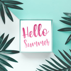 hello summer concepts with text on pastel tropical leaves on color background