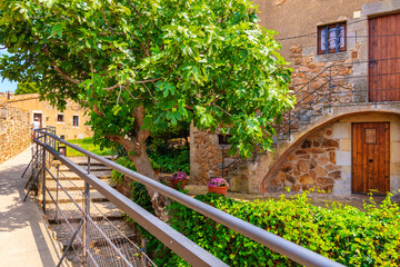 Fototapete - Green tropical plants and stone houses in old town of Tossa de Mar, Costa Brava, Spain