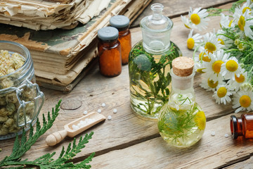Infusion bottles, Chamomile flowers and Thuja occidentalis plant, bottles of homeopathic globules and old books.