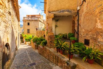 Wall Mural - Narrow street in historic old town of Tossa de Mar, Costa Brava, Spain