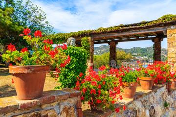 Wall Mural - Flowerpots on stone wall along coastal path in Tossa de Mar town, Costa Brava, Spain