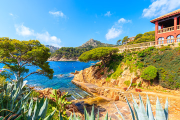 Fototapete - View of coastal path and sea in picturesque port of Fornells village, Costa Brava, Spain