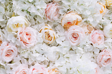 Flowers wall background with white and light orange roses. Wall mural