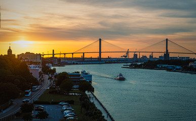 Fototapete - The Sydney Lanier Bridge across the Savannah River