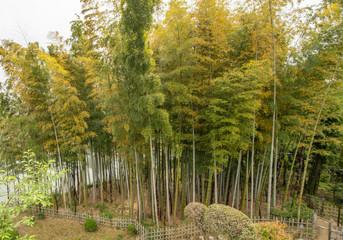 Der Shukkei-en Garten in Hiroshima