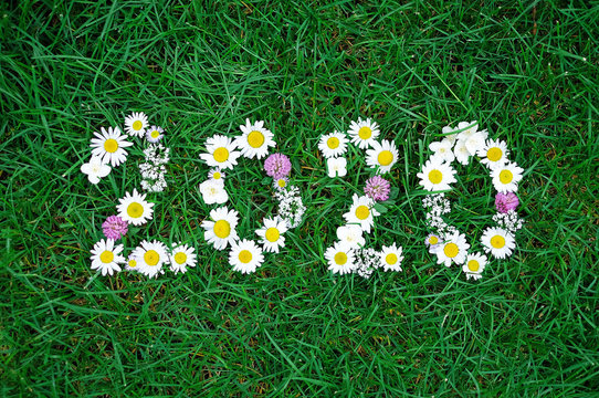 new year 2020 made of garden flowers on the grass